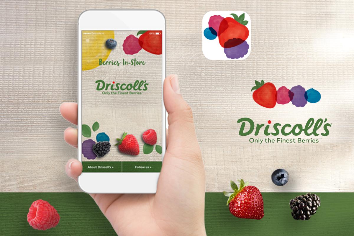 Portfolio_Driscolls_App-1200x800